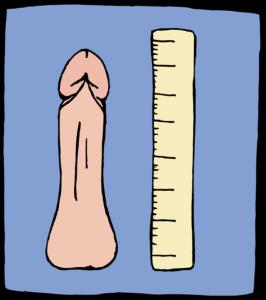alargamiento del pene