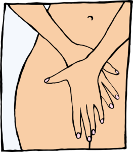 vagina, clítoris y labios genitales